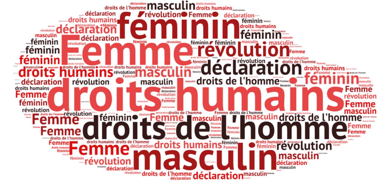 Histoire du mouvement des droits de l'Homme